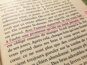 La promesse de L'aube Romain Gary
