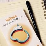 La France et ses philosophes : Voltaire