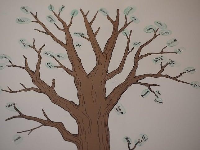 Psychogénéalogie, partir sur les traces de notre premier héritage