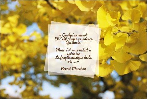 7 Conseils Pour Faire Vos Remerciements Décès