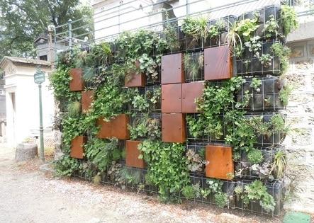 Columbarium- Mur végétal cinéraire