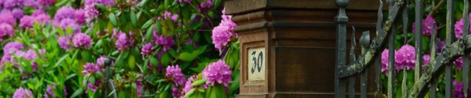 devanture portail fleurie