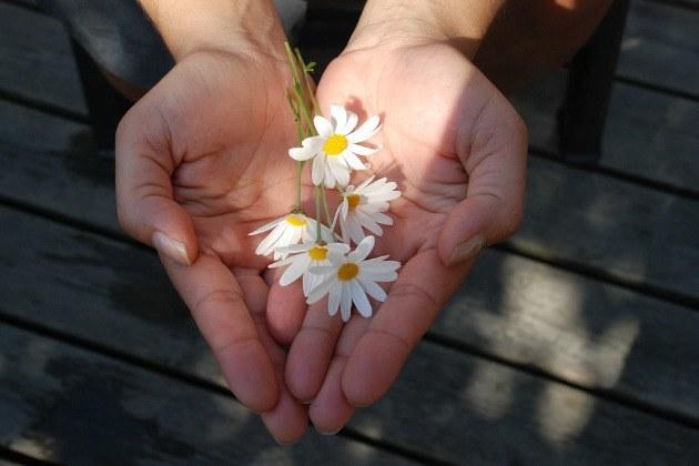 creux de mains avec fleurs