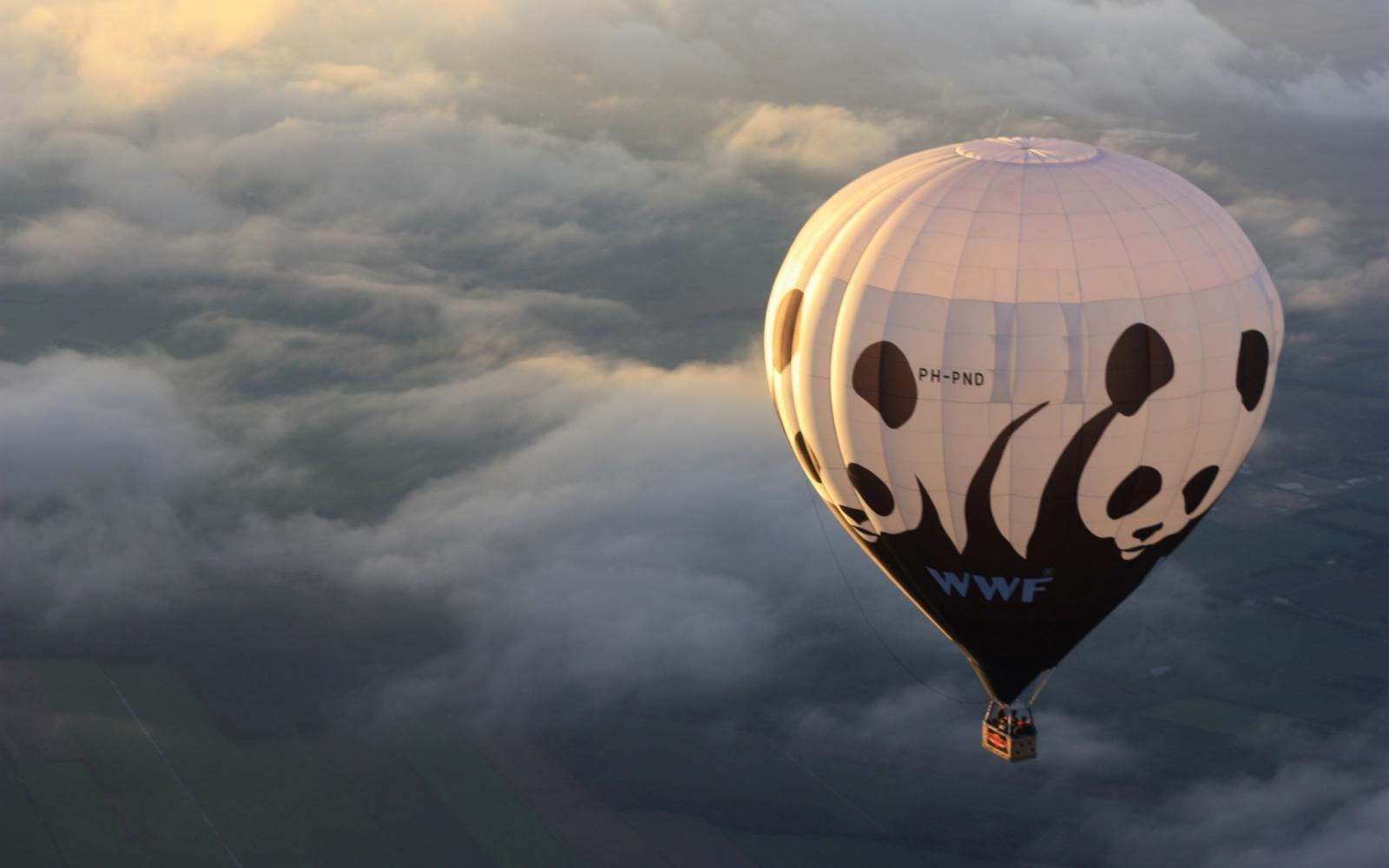 Testamento collabore avec l'association WWF